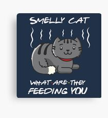 Cute Smelly Cat Canvas Print
