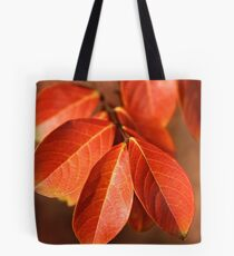 Autumn Richness Tote Bag