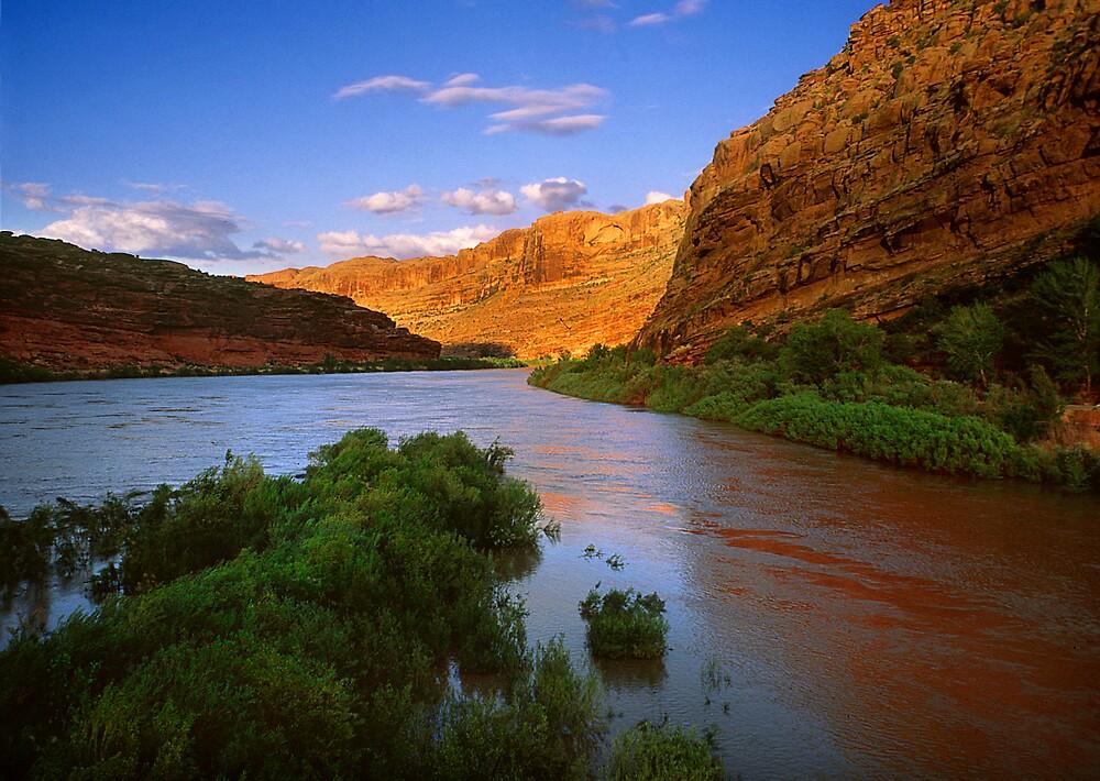 Colorado River by Steve  Taylor