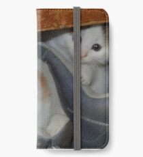 cute kittens in boots iPhone Wallet