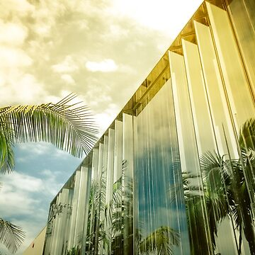 Beverly Hills - Palm Reflections II by vanroy