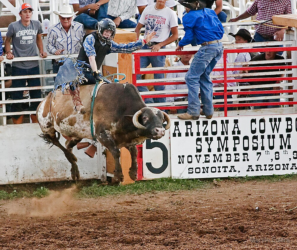 Bull Rider by Marvin Collins