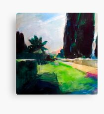 Cypresses Canvas Print