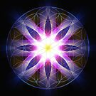 Flower of Life by amira