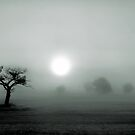 Hunstanton by Terence J Sullivan