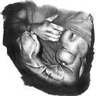 Arms by David J. Vanderpool