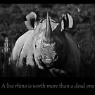 A live rhino is worth more than a dead one by Shaun Swanepoel