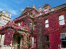 Hestercombe House, Somerset, England by trish725