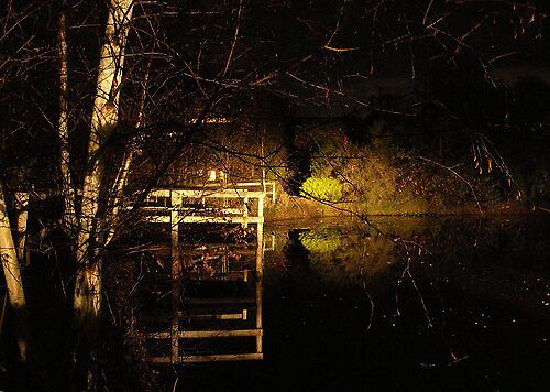 Pond at Night #2 by Kate Hore