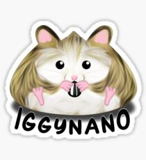 Iggynano Sticker