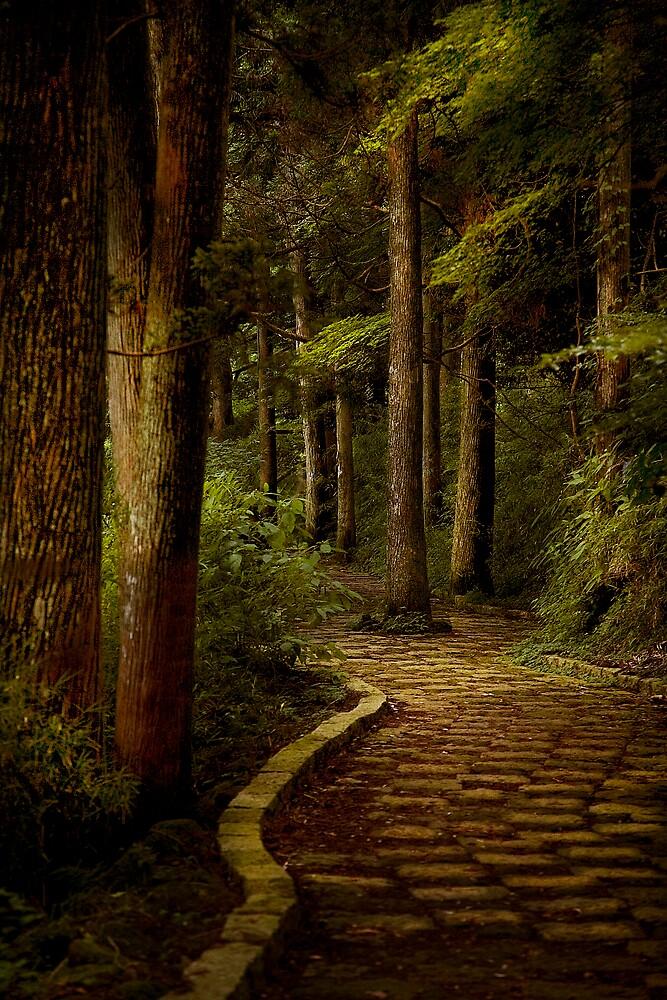 Hakone, Japan by Charles McKean