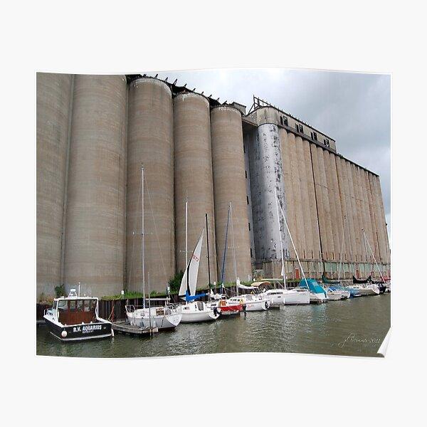 Buffalo Grain for Sail Poster