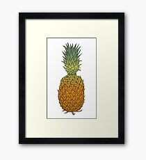 Pineapple hand drawn colored ink sketch Framed Print