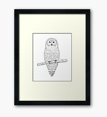 Owl hand drawn ink sketch Framed Print