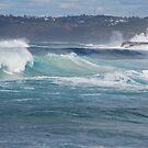Waves in Motion by Bev Woodman