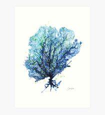 Sea Fan - Aqua Art Print