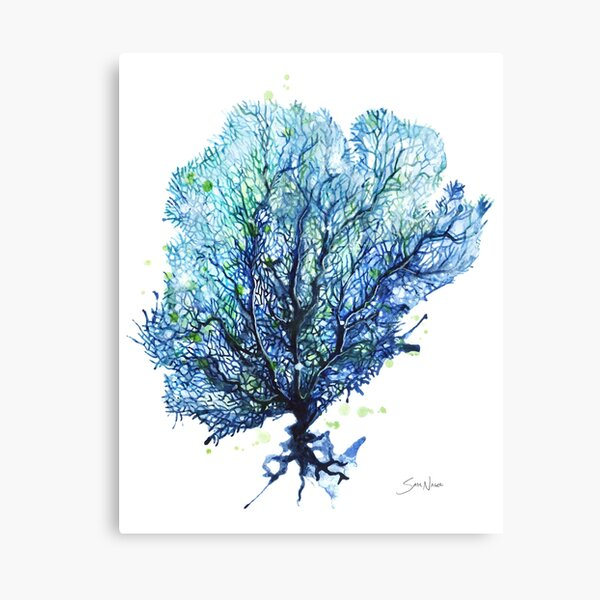 Fan Coral - Aqua Canvas Print