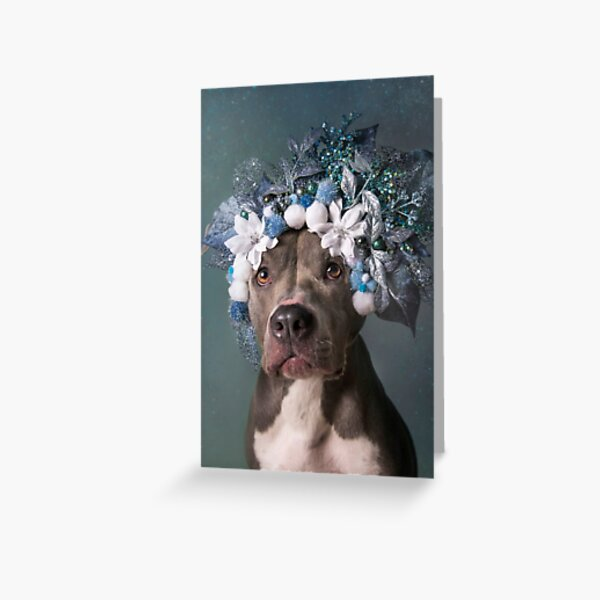 Flower Power, Patsy Greeting Card