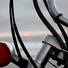 Beach Bike 2 by aneedles