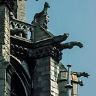 Gargoyles on end of Apse Cathedral Amiens France 19840821 0045  by Fred Mitchell