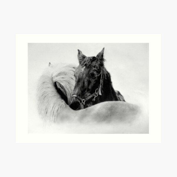 Horses by Mearqur Lámina artística