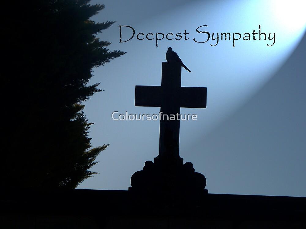 Dove Sympathy card by Coloursofnature