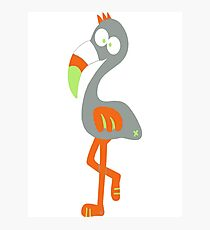 Flamingo Bird cool Ego arrogant Funny Comic  Photographic Print