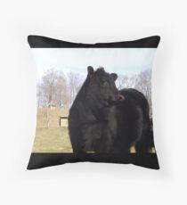 Cow Glare Throw Pillow
