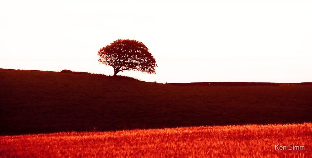 Tree by Kenart