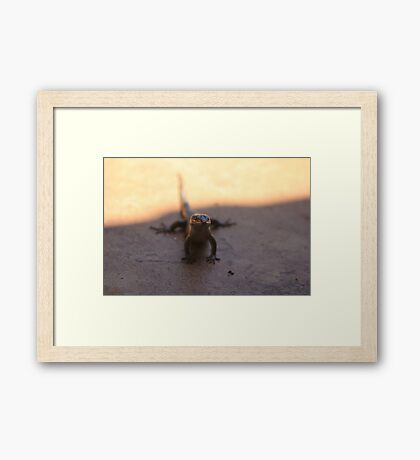 Being a dragon is amazing! Framed Print