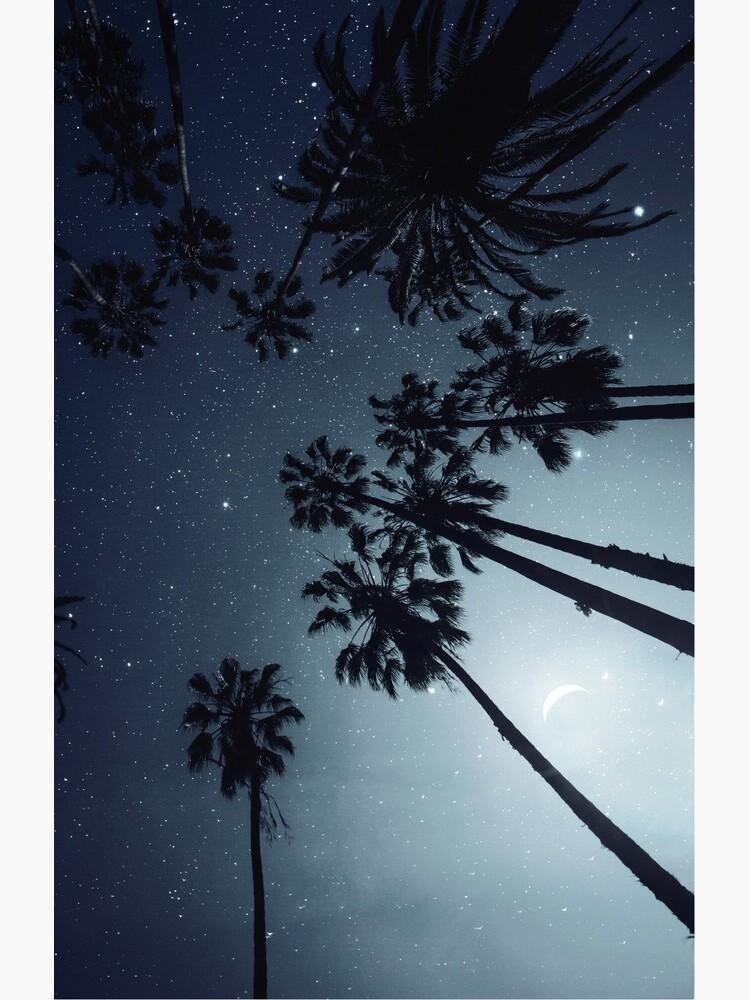 Palm Trees, Night Sky, Stars, Moon by va103