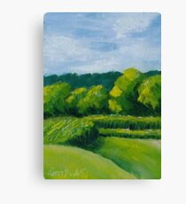 Hot Summer Afternoon Canvas Print
