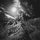 Mondlicht-Wahnsinn von Victoria Avvacumova
