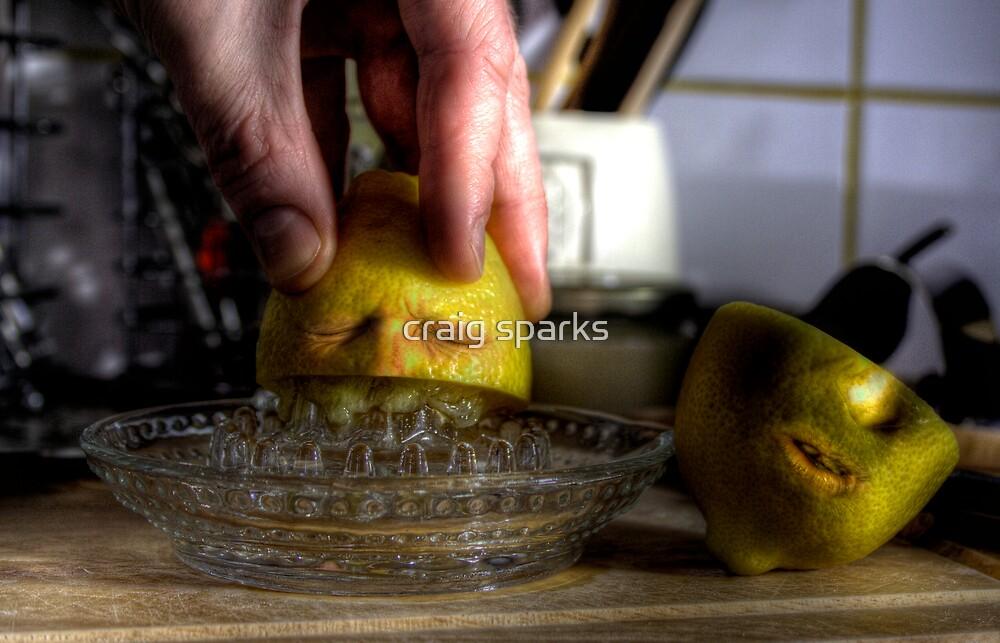Lemonicide by craig sparks