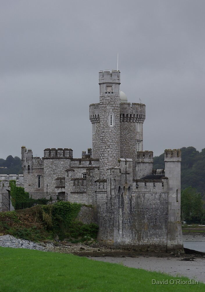 Blackrock Castle by David O'Riordan