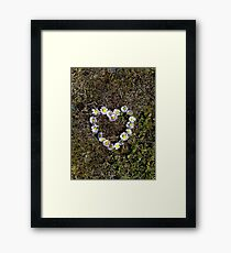 Saying it with Daisies Framed Print