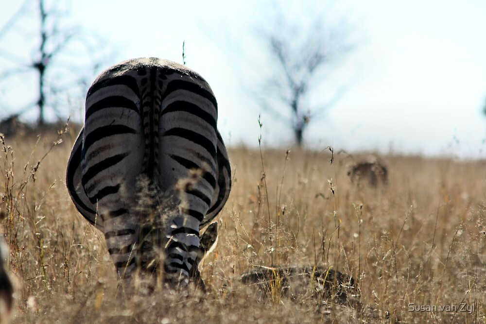 ~Rear View!~ by Susan van Zyl