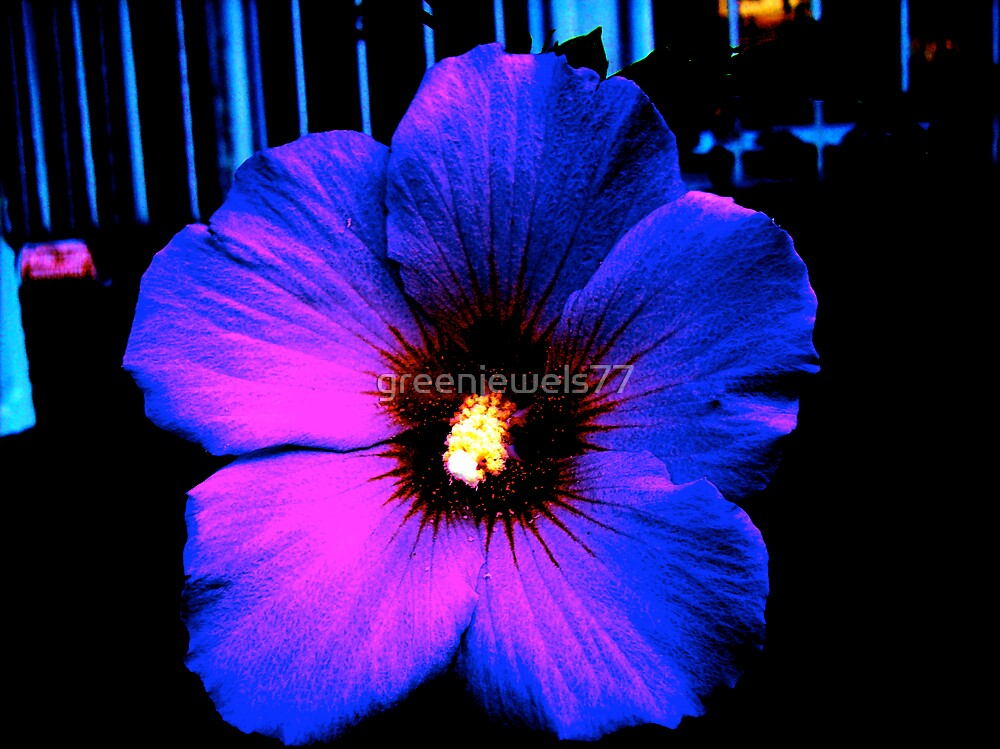 Explosions at the Vortex of A Flower by greenjewels77