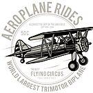 Aeroplane Rides by Scott Westlake