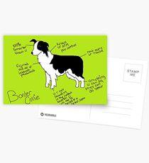 Border Collie Postcards