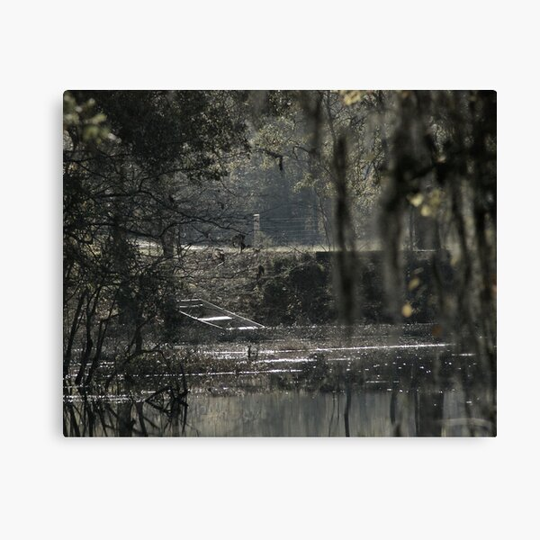 Born on the Bayou Canvas Print
