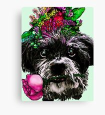 Maisie for Lesley  Canvas Print