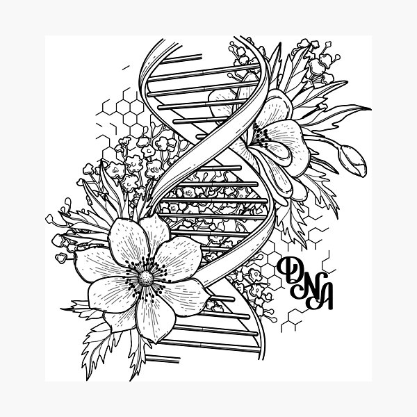 Graphic DNA structure with floral design Photographic Print