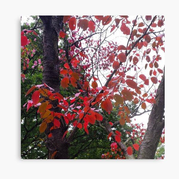 Autumn Sticker V Metal Print