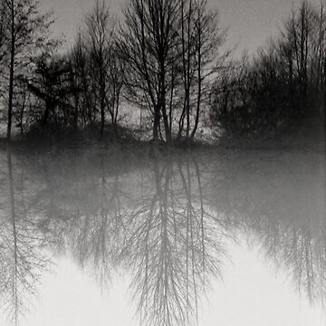 Reflections Scoulton Mere by Spartanbass