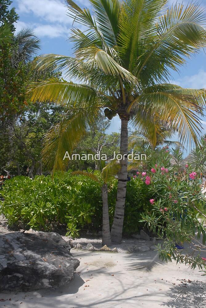 Caribbean Bliss by Amanda Jordan