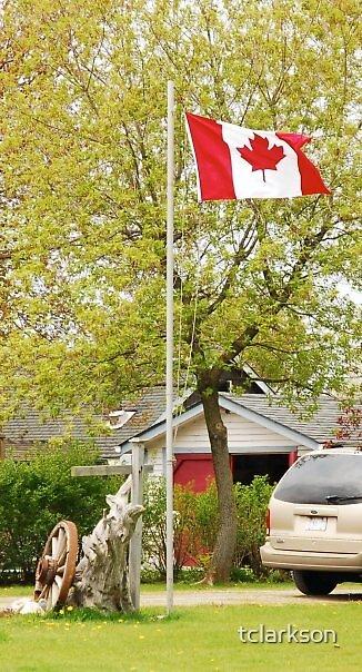 Canadian Flag by tclarkson