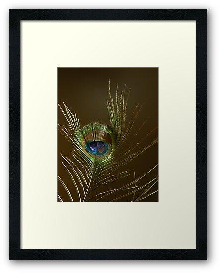 The Peacock Dude! #2 by Len Bomba