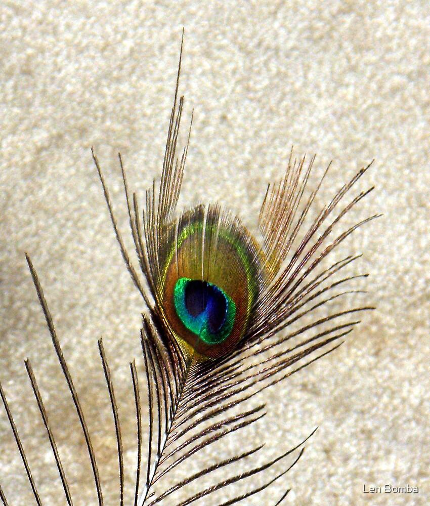 The Peacock Dude! #3 by Len Bomba