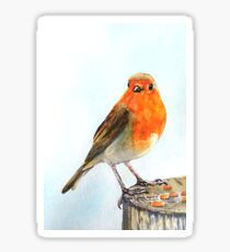 Robin 7 Sticker